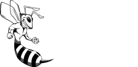 Busy Bee Media - Internet Marketing Company